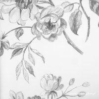 Sketchbook Black and White